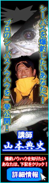banner4_43616.jpg
